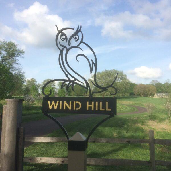 Wind Hill Owl